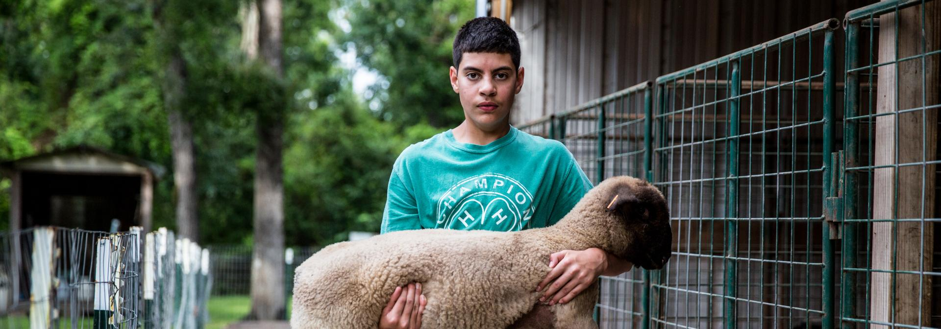 4-H Sheep Animal Science