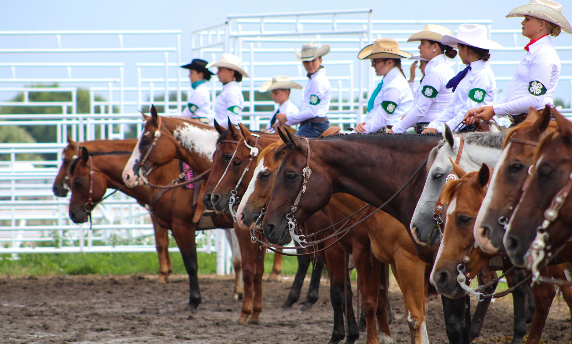 4-H youth riding horses in arena