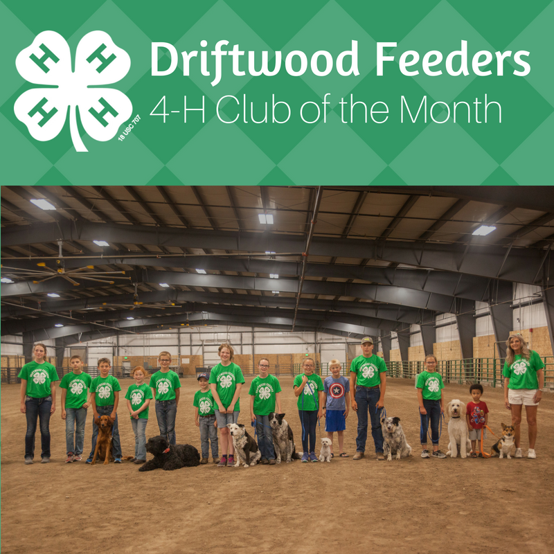 Driftwood Feeders 4-H Club of the Month