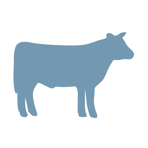 steer icon