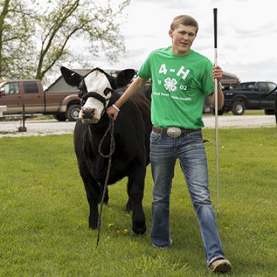 State Fair Livestock Nomination Deadline Extended