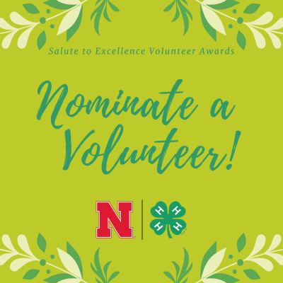 Salute to Excellence Volunteer Awards: Nominate a Volunteer
