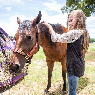 Horsemanship Advancement Levels