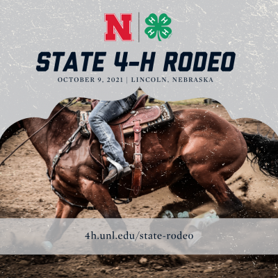 State 4-H Rodeo graphic