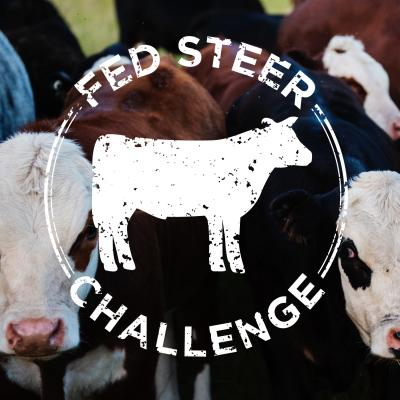 Fed Steer Challenge graphic