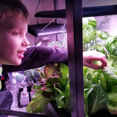 Explorer 4-H Club member examine plant science project