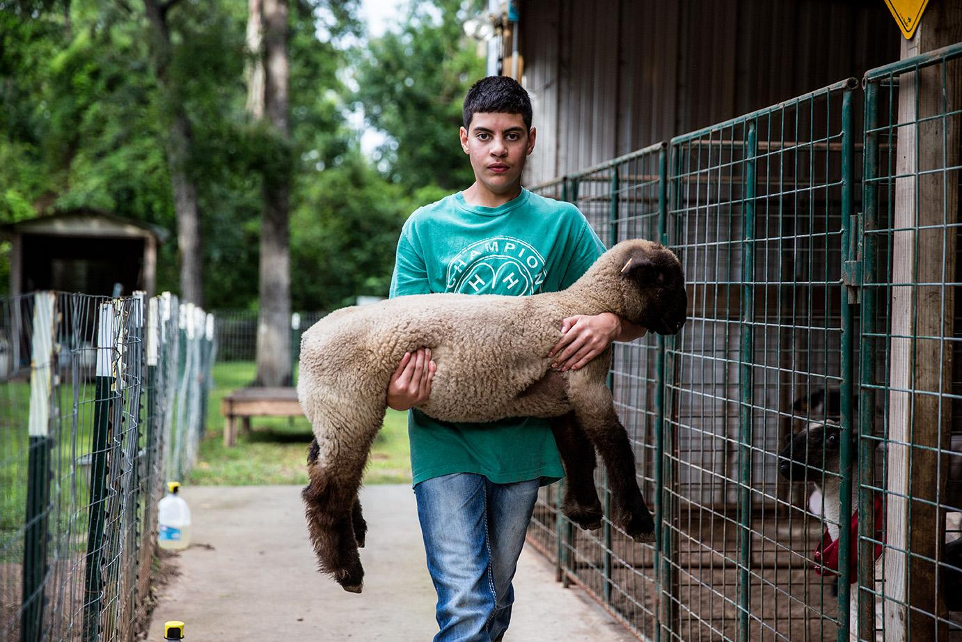 teen carries lamb