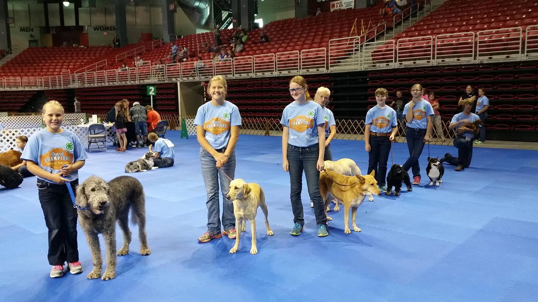 Nebraska State 4-H Dog Show