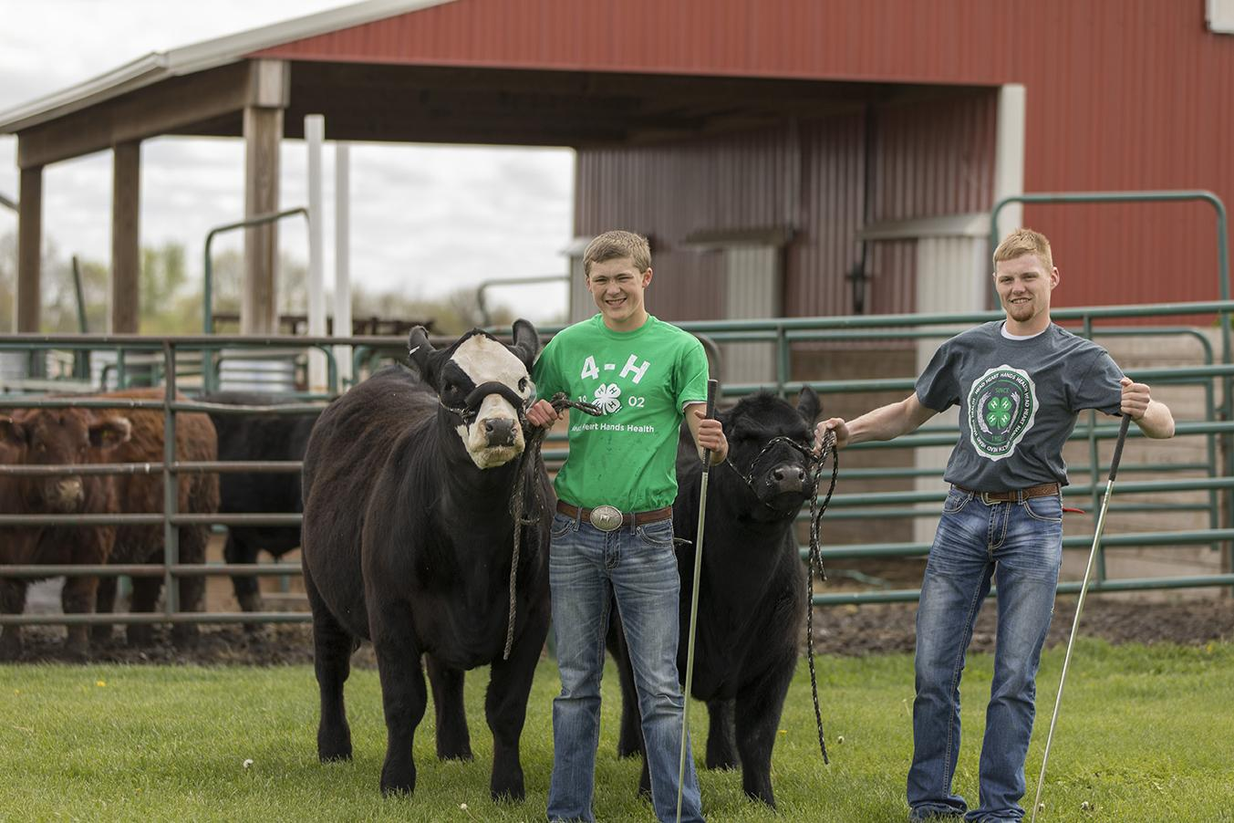 two teens standing with show calves