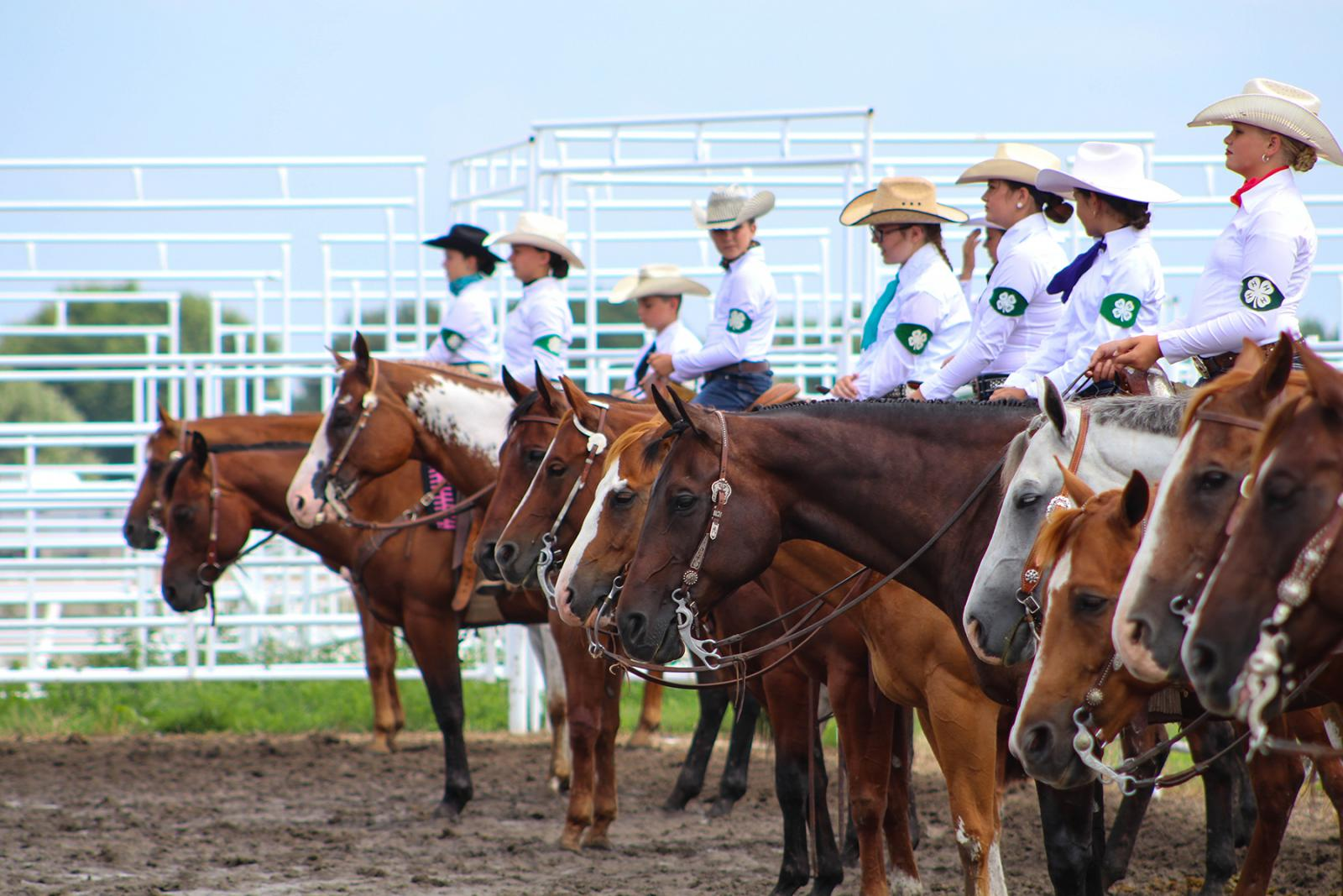 4-H members riding horses in showring