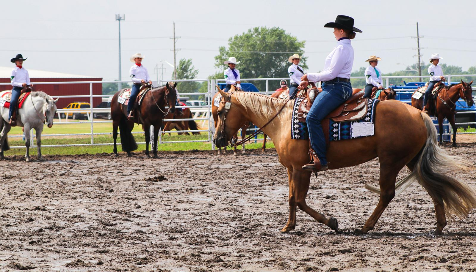 4-H members riding horses in a showring